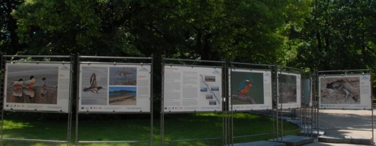 """+fot. R. Motyl, Fragment wystawy, <a href=""""http://www.um.warszawa.pl/"""" class=""""ext"""" rel=""""nofollow"""">www.um.warszawa.pl</a>"""