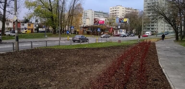 Zarząd Oczyszczania Miasta dba o trawniki
