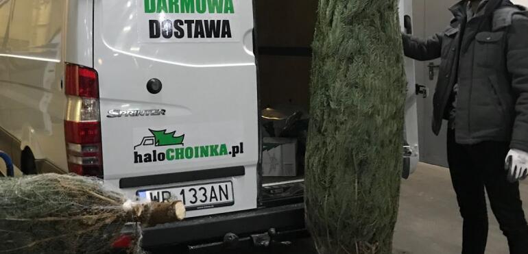 Choinka świąteczna z dostawą do domu