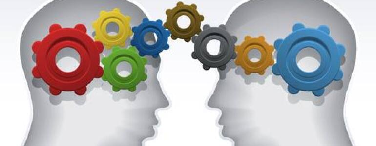 Brain Kurs