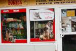 Pokarmy i akcesoria dla zwierząt